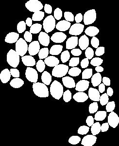 Logo - Regionalverband in weiß